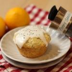 TWD: Lemon Poppyseed Muffins