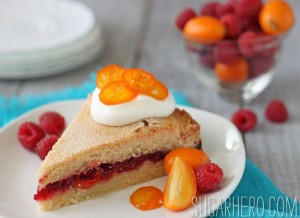 raspberry-kumquat-cake-1.jpg