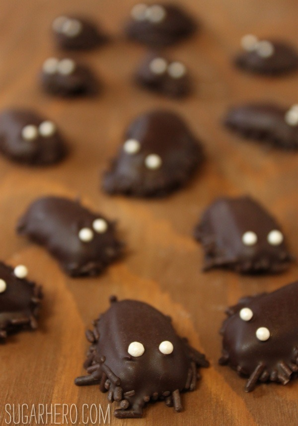 Chocolate Cockroaches Sugarhero