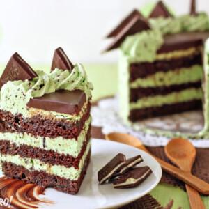 Mint Chocolate Chip Layer Cake | From SugarHero.com