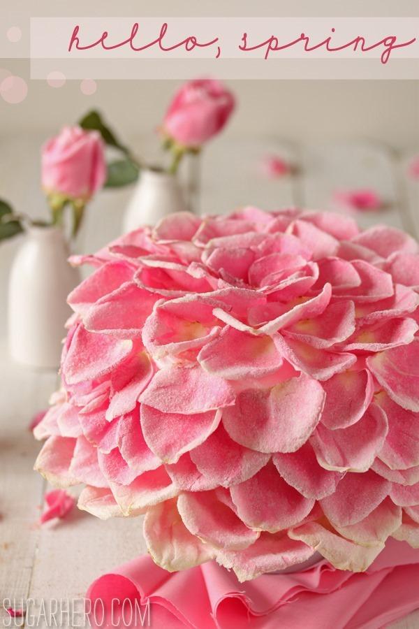 raspberry-rose-cake-2