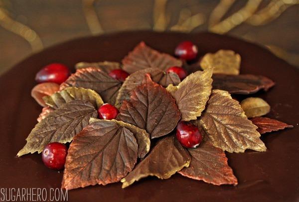 cranberry-chocolate-truffle-cake-2