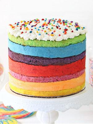 Rainbow Mousse Cake   From SugarHero.com