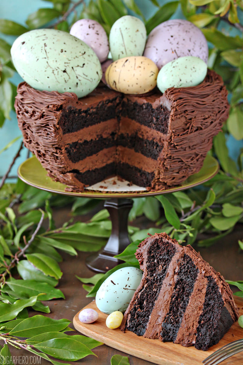 Easter Nest Cake - a double chocolate cake decorated to look like a bird's nest. It's surprisingly easy and perfect for Easter! | From SugarHero.com