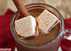 Pumpkin Hot Chocolate   From SugarHero.com
