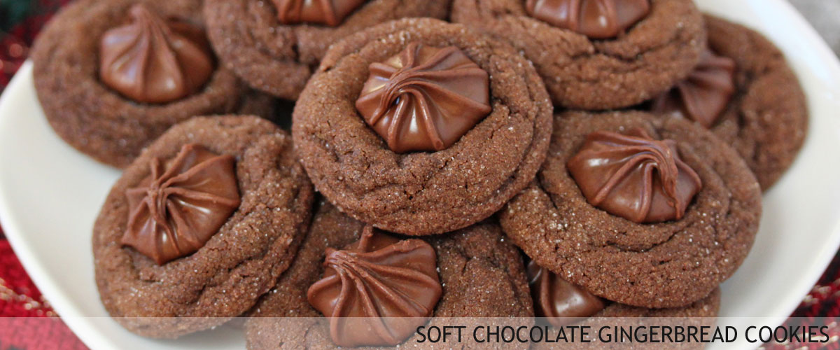 chocolate-gingerbread-cooki