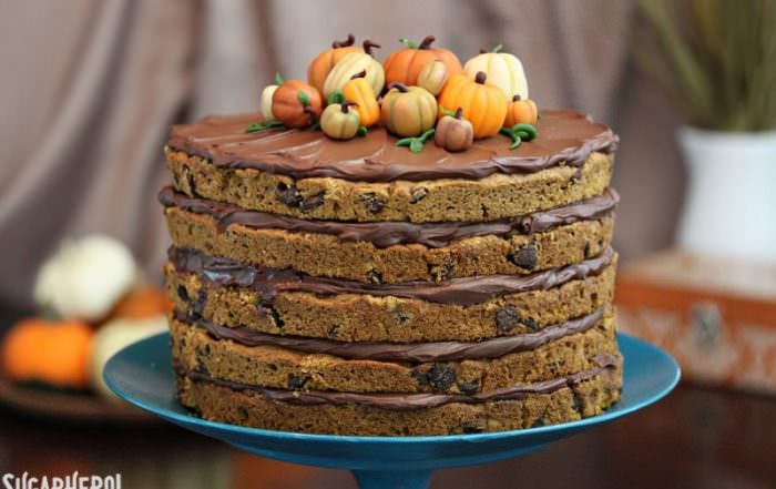 Pumpkin Chocolate Chip Cake | From SugarHero.com