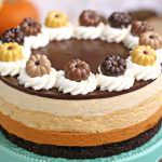 Pumpkin Chocolate Mousse Cake
