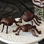 Chocolate Spiders | From SugarHero.com