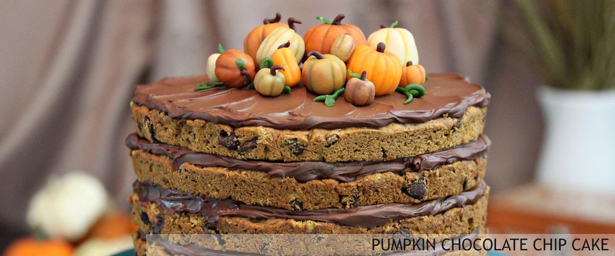 pumpkin-chocolate-chip-cake-1