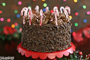 Chocolate Candy Cane Cake | From SugarHero.com