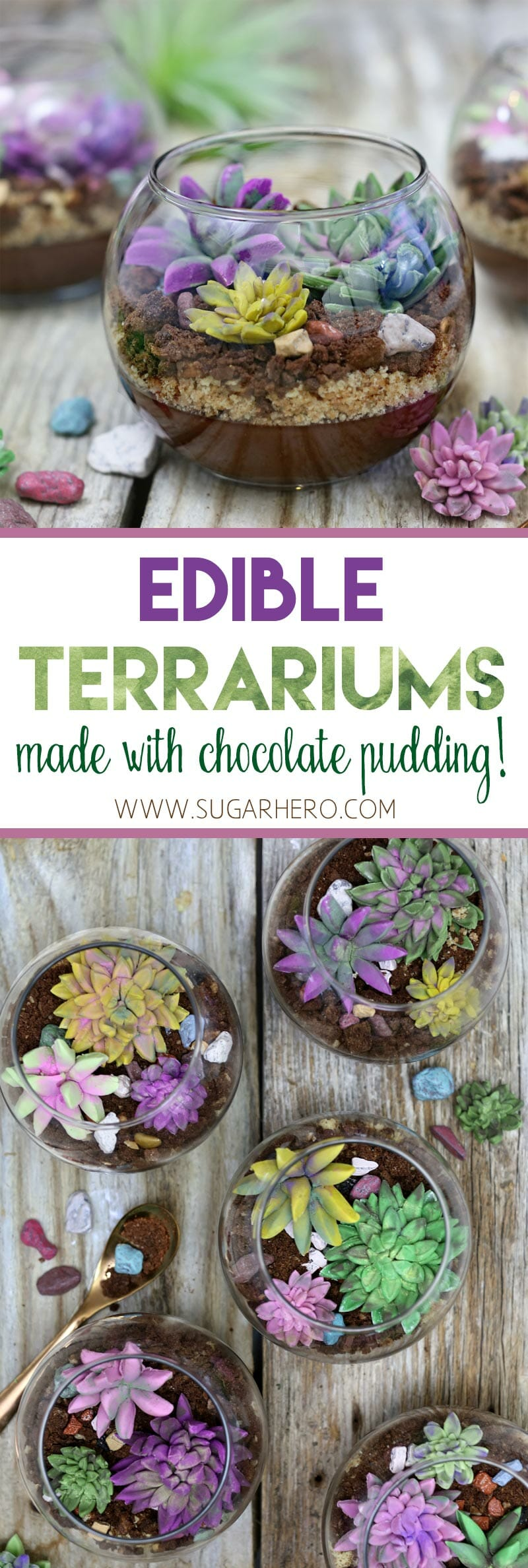 Edible Terrariums with Chocolate Pudding | From SugarHero.com