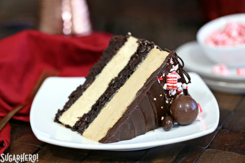 Peppermint Mocha Mousse Cake - close-up of single slice of mousse cake | From SugarHero.com