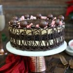 Peppermint Mocha Mousse Cake | From SugarHero.com