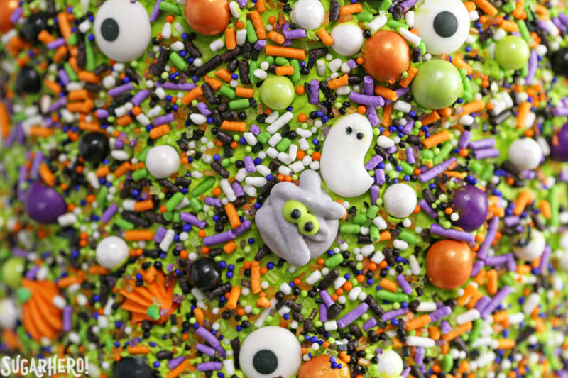 Monster Cake - close-up of the sprinkles on the side of the cake | From SugarHero.com