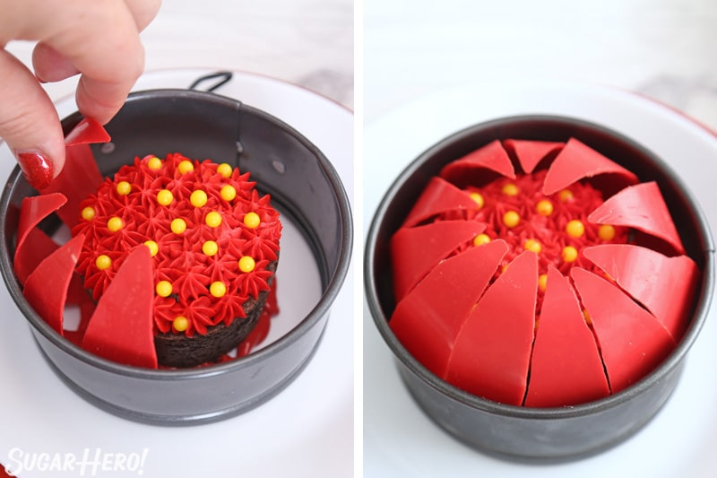 Blooming Chocolate Flowers - placing curved red petals around the edge of a springform pan to create a sphere | From SugarHero.com