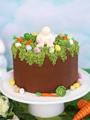 Chocolate Easter Bunny Cake | From SugarHero.com