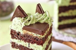 Mint Chocolate Chip Cake with text overlay for Pinterest