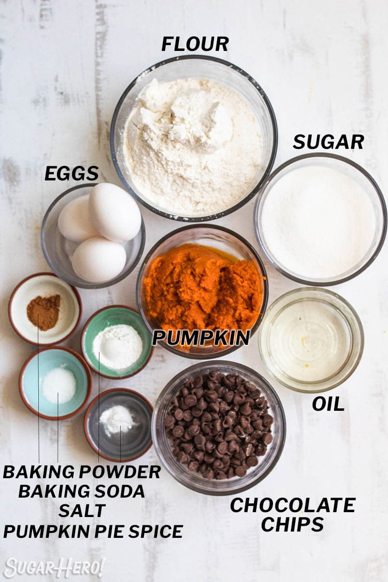 Overhead shot of all ingredients needed to make Pumpkin Chocolate Chip Bread.